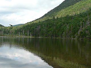 Greely pond