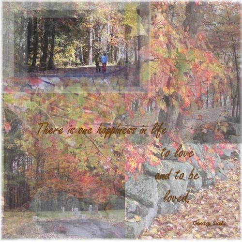 Autumn_montage