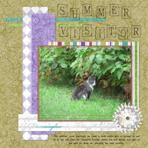 Summer Visitor