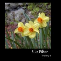 Blur_1
