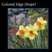 Colored_edge
