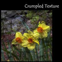 Crumpled_texture
