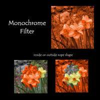 Monocrome_alone