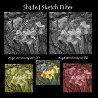 Shadded_sketch