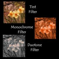 Tint_monochrome_duotone_comparison
